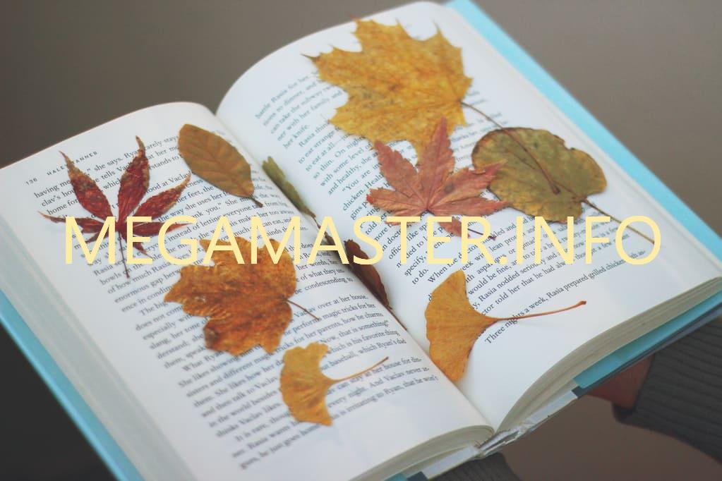 Сушим листья в книге
