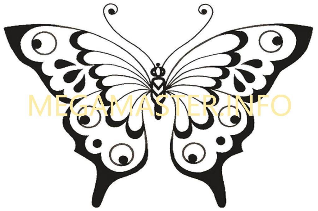 Трафарет для бабочки