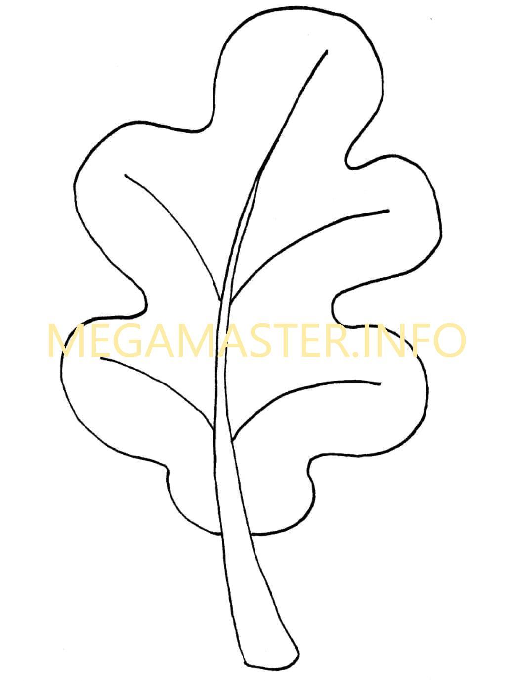 Лист дуба шаблон