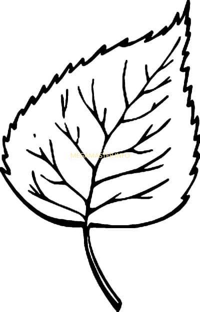 Шаблон для вырезания лист осины
