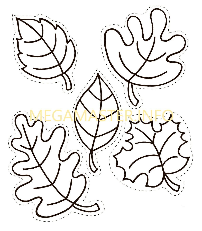Шаблоны листьев для вырезания