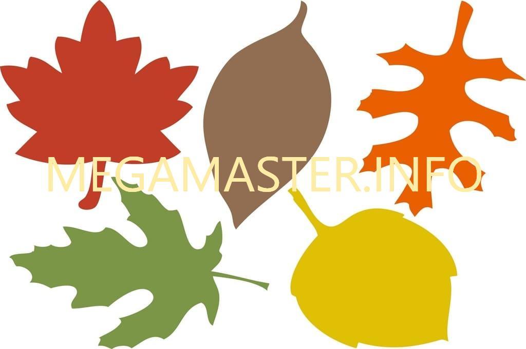 Шаблон цветных листьев (2)