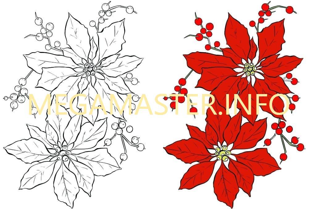 Трафарет рождественского цветка Пуансеттия