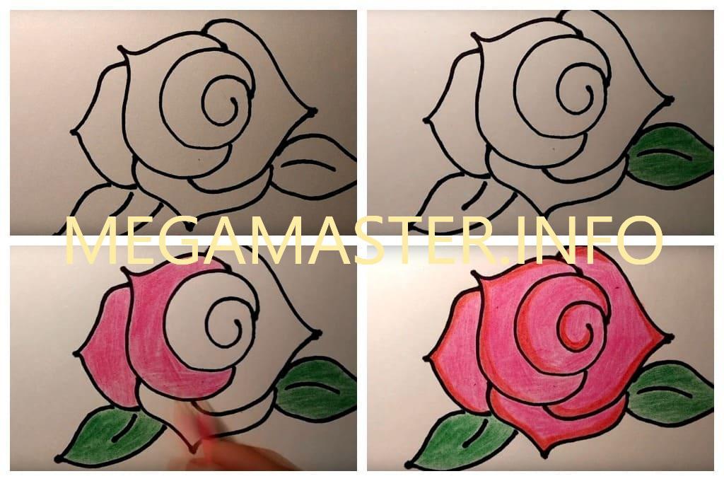 Картинки как быстро и красиво нарисовать розу