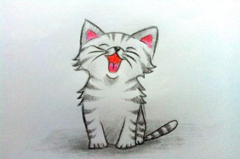 Как нарисовать котенка поэтапно
