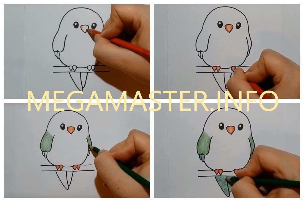 Простая яркая птичка (Шаг 3)