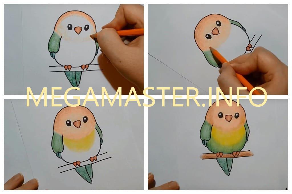 Простая яркая птичка (Шаг 4)