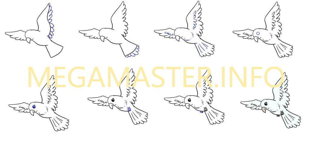 рисуем птицу в полёте 2