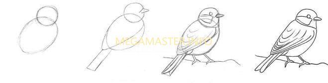 Рисуем птицу на ветке