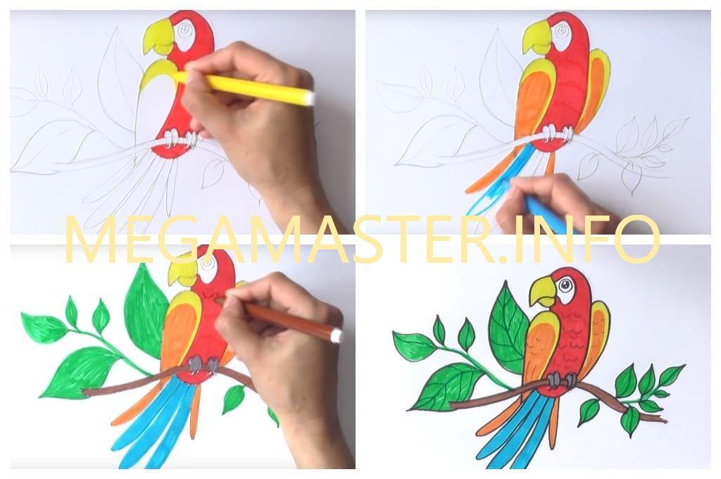 Рисуем попугая фломастерами (Шаг 4)
