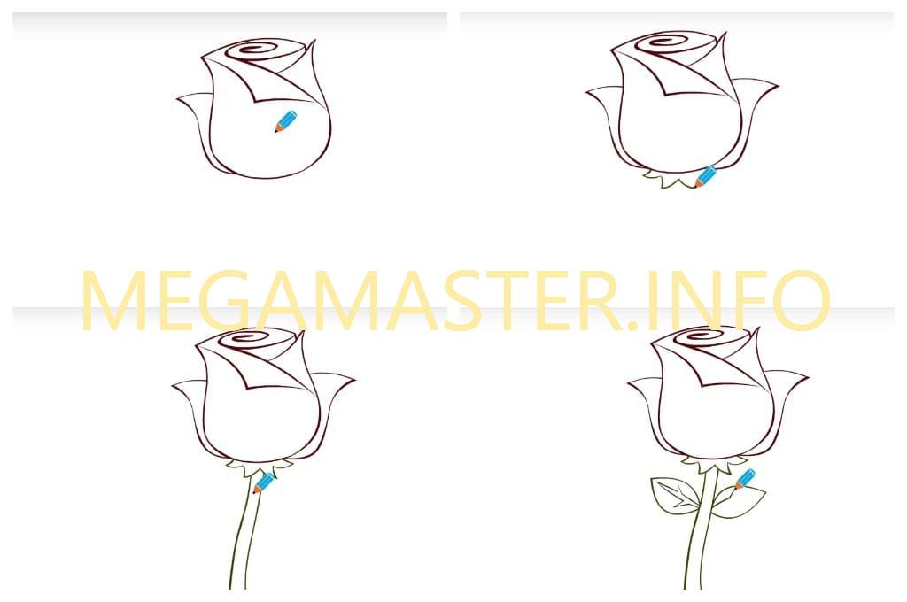 Роза для самых маленьких (Шаг 3)