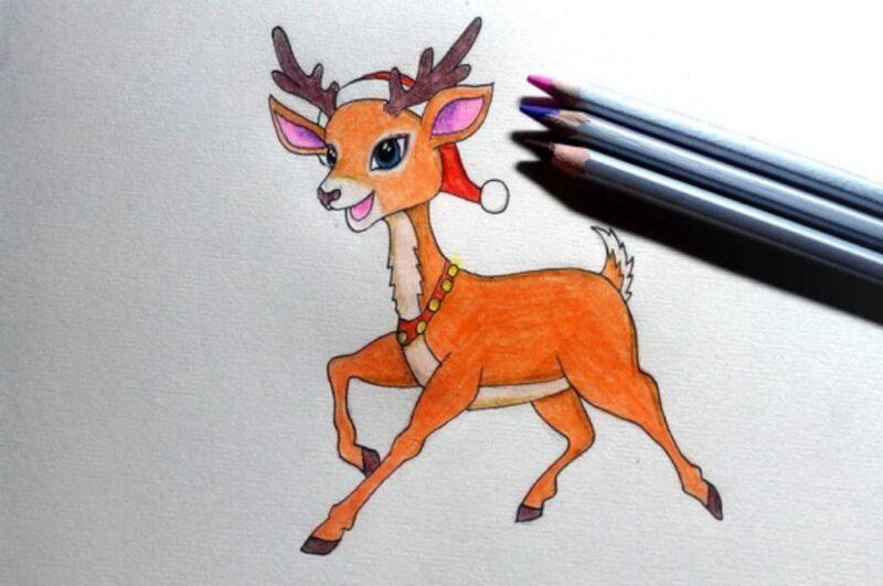 Как нарисовать оленя карандашом поэтапно для начинающих