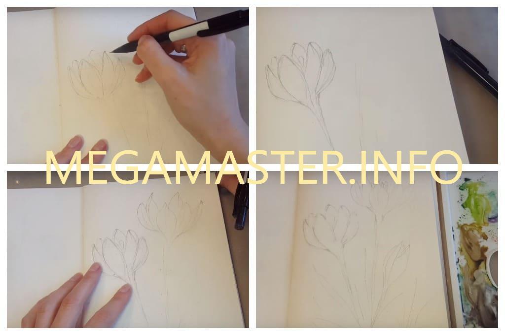 Крокусы, нарисованные акварелью (Шаг 1)