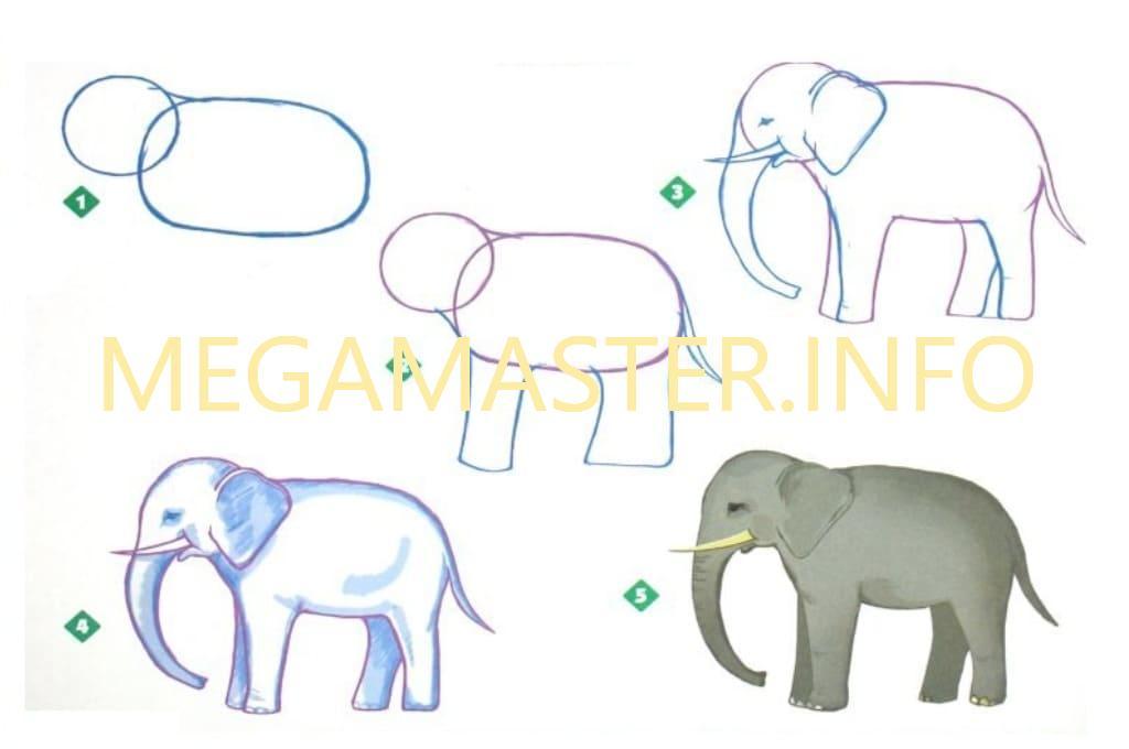 причины смотреть картинки как нарисовать слона десерт покорит