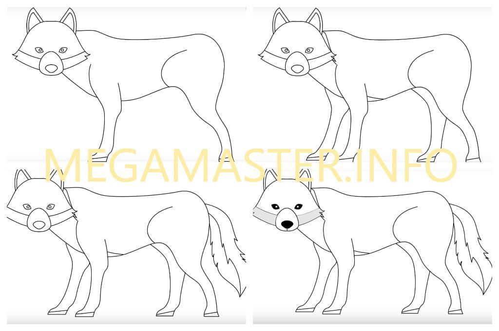 Волк картинка поэтапно для детей