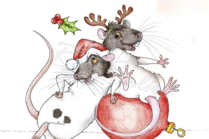 Как нарисовать крысу карандашом поэтапно на Новый год