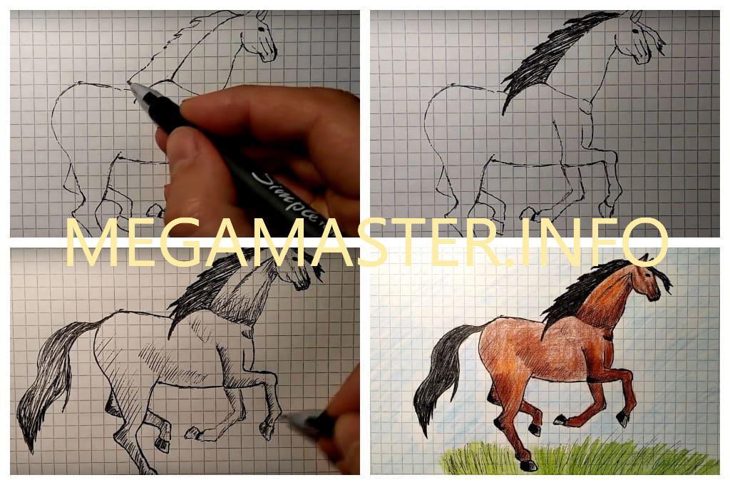 Рисуем лошадь по клеточкам (Шаг 3)