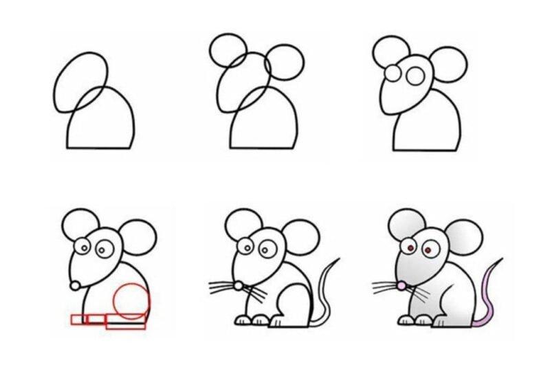 Простая инструкция рисования мышонка