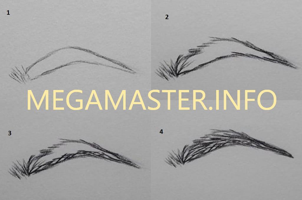 поэтапные картинки как нарисовать брови человека карандашом место куршкой