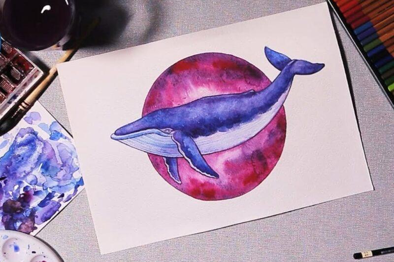 Как нарисовать кита поэтапно для детей лёгким способом