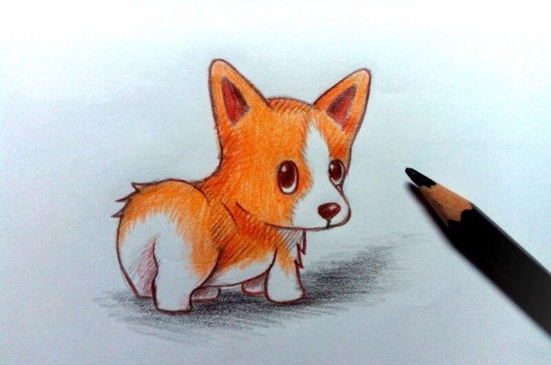 Как нарисовать щенка карандашом поэтапно