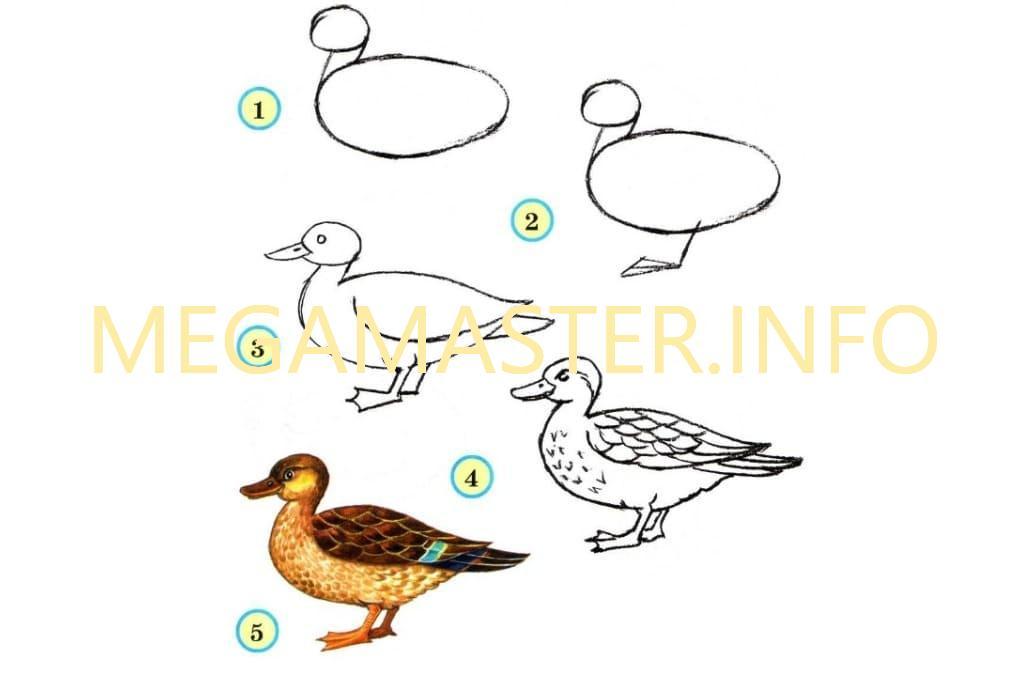 Урок рисования радуги 1 класс фгос