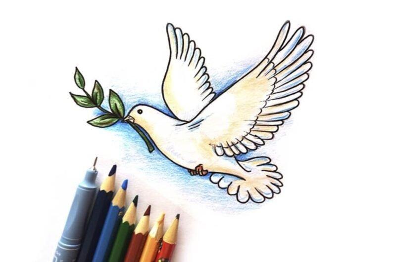 Как нарисовать голубя поэтапно легко и просто
