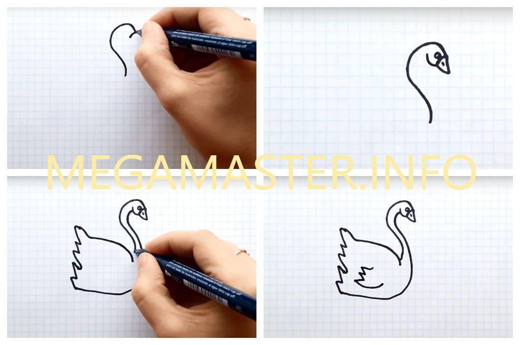 Красивая пара лебедей простым способом (Шаг 1)