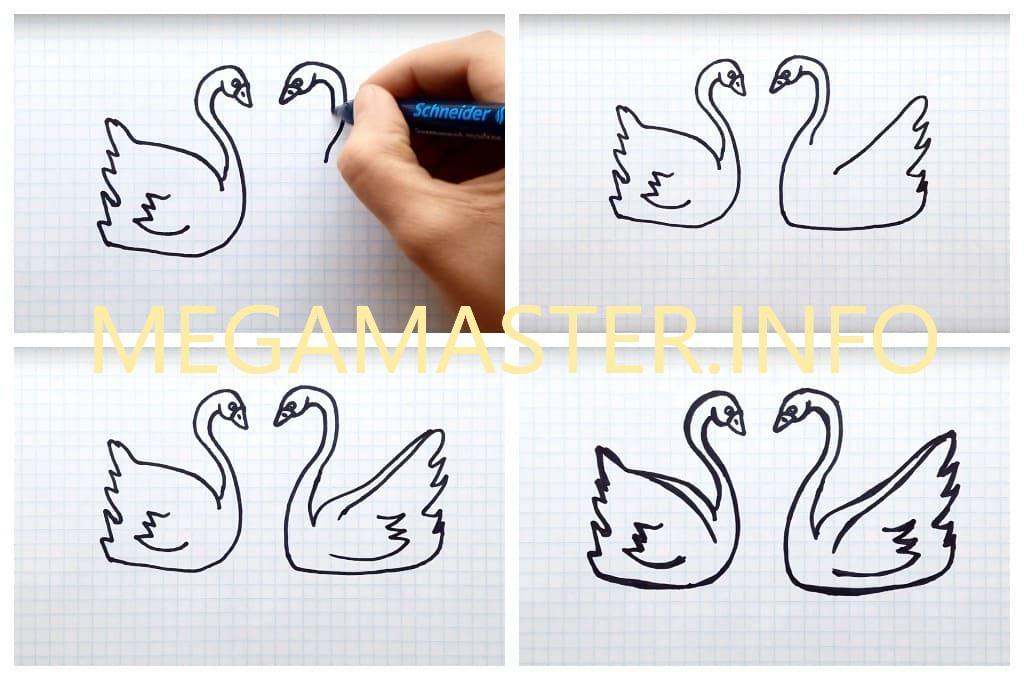 Красивая пара лебедей простым способом (Шаг 2)