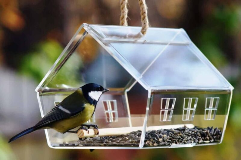 Как делается кормушка для птиц своими руками
