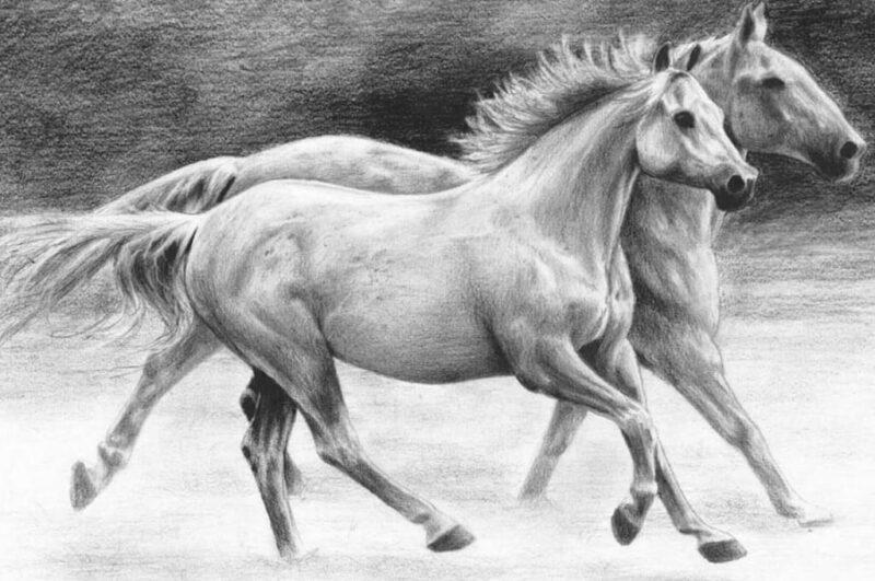 Как нарисовать коня карандашом поэтапно лёгким способом