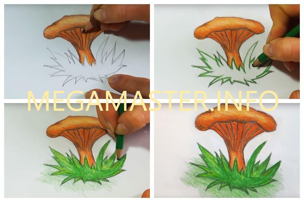 картинки нарисовать гриб лисичку терраса пейзаж закат