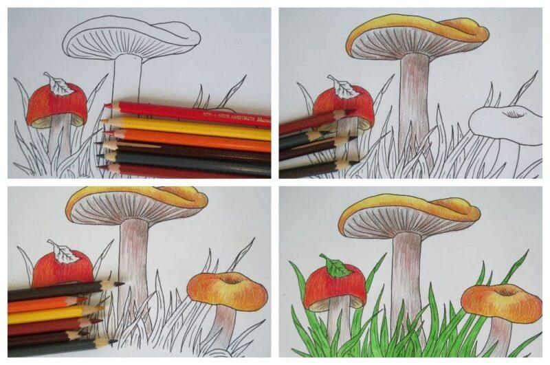 как нарисовать грибы карандашом
